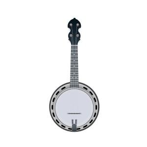 banjo guitar erik mjörnell